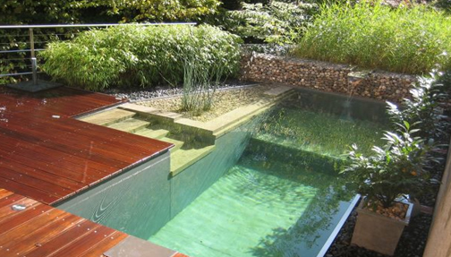 Natural swimming pools by ontario 39 s eco pools inc Environmentally sustainable swimming pools