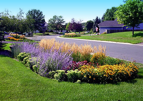 Rain Gardens Are Sprouting Up Houseporn Ca